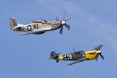 North American TF-51D Mustang and Hispano HA-1112-M1L Buchon - 01 (NickJ 1972) Tags: cosby victory show airshow 2018 aviation hispano messerschmitt bf109 me109 ha1112 buchon gawhh white 9 northamerican p51 tf51 mustang gtfsi 4414251 wzi contrarymary 4484847