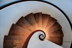 Schneckenhaus (petra.foto busy busy busy) Tags: schneckenhaus treppe schnecke stair architektur fotopetra 5dmarkiii hamburg germany