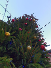 Rufford 06 Xmas Tree (bob watt) Tags: samsung mobile s9 ruffordabbey rufford nottinghamshire england uk december 2018