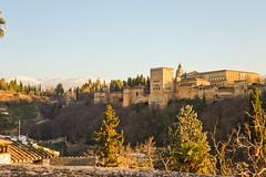 012/365 ? Take this waltz (Jose RL) Tags: 365 365project 3652019 proyecto365 granada alhambra alhambradegranada mirador sierranevada
