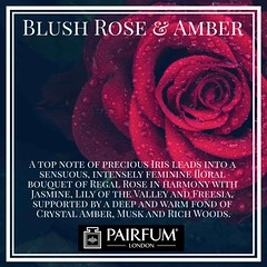 A Rose by Any Other Name (PAIRFUM) Tags: artisanperfumersoflondon bloggerstyle colorcrush decorhome decorinspiration diyblog fashionblogger fbloggers interiordesign interiorinspiration lifestyleblog lifestyleblogger linkinprofile love minimalfashion minimalhunter minimalismo minimalmood minimalove minimalgraphy minimalperfection mywestelm ontheblog pairfumlondon perfume perfumelovers perfumemagazine sodomino styleblogger uohome