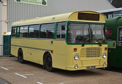 KDL 203W (tubemad) Tags: kdl203w 203 ecw bristol lh lhs6l southern vectis iow bus museum preserved