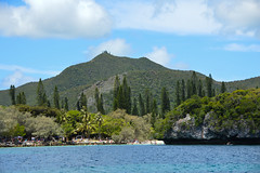 Kanumera Beach (Seventh Heaven Photography *) Tags: kanumera beach bay isle pines new caledonia pacific south islands water sea sky blue trees