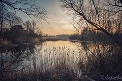 Sound of Silence (Stathis Iordanidis) Tags: sunset reflections stillwater travelling countryside tranquility serenity silence nature lakeside amazinglam branches trees lakeshore lake