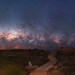 Milky Way Setting Near Dunsborough, Western Australia