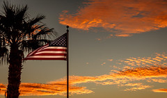 Beautiful Old Glory (http://fineartamerica.com/profiles/robert-bales.ht) Tags: arizona facebook fineart flag flickr foothills haybales misc people photo photouploads places states sunsetorsunrise freedom symbol white red blue americanflag independence american patriotism national pride striped country cloud star celebration democracy vibrantcolor robertbales yuma pole sunlight fluttering waving america stripes sunset yellow unitedstates wind united nation oldglory tree photograph