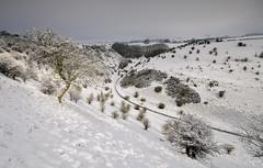 Biggin Dale (Andrew Mowbray) Tags: derbyshire peakdistrict snow winter whitepeak biggindale