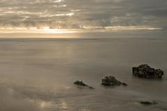 Noordzee (dyjaf) Tags: kust noordzee bigstopper le
