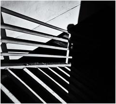 Lomography (Black and White Fine Art) Tags: lomography lomo holga holga120n aristaedu100 plasticcamera camaradeplastico toycamera camaradejuguete niksilverefexpro2 lightroom3 sombra shadow sanjuan oldsanjuan viejosanjuan puertorico bn bw