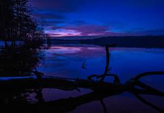 lochravensunset-0934 (york13d) Tags: landscape landscapephotography water sunset tree sky nikkor landscapelovers nikon nature naturephotography light beautiful