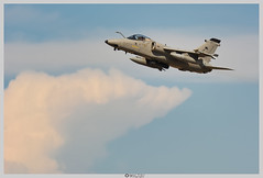 AMX Aeronautica Militare Italiana (buchon109) Tags: aeronautica militare militar aeronauticamilitareitaliana amx tlp