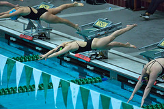 142A1391 (Roy8236) Tags: gmu american old dominion swim dive