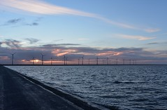 Today's view (annemarie.2) Tags: water sea wind windmills blue bluesky bluesea greensea orange orangesky pinksky pink wolken sunset pinksunset mills typicaldutch typical typicalholland dike dutchdike dikes waves clouds sky sun sunlight sunrays cloudy night winternight winter waddensea waddenzee zee zonsondergang view dutchview uitzicht blauw roze wit oranje orangesunset skies goldenhour nikond3400 nikon lines straight nature naturephotography landscape holland hollandscene photographyholland cold fresh windy