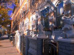 IMG_1365 (kobojane) Tags: bushwick brooklyn new york city