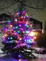 Tis The Season ... (Mr. Happy Face - Peace :)) Tags: glow lights tree snow lighting shadow art2018 winter glowing