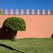 Wall / Jardins de l'Agdal