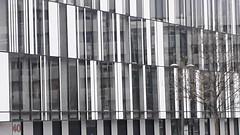 20181118_165448 (Benoit Vellieux) Tags: france rhônealpes auvergnerhônealpes lyon 2èmearrondissement 2nddistrict confluence architecture contemporary zeitgenössisch contemporain arbre baum tree lampadaire strasenlampe streetlight réverbère lamppost strasenlaterne strasenleuchte immeubledebureaux officebuilding bürogebäude