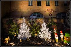 _MG_6479 (Celtycrow) Tags: photodenuit montaubanbynight poselongue montauban noël christmas christmaslight