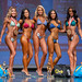Novice Bikini - 4th Chelsea Bergman, 2nd Jessica Chau, 1st Sukhi Pangli, 3rd Janine Jinahon, 5th Casey Tyler