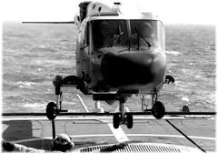 Lynx WG13 (Laurent Quérité) Tags: canonfrance canonae1 noirblanc blackwhite helicoptere aviation aéronef aéronavale aéronautiquenavale frenchnavy marinenationale militaryaircraft flickrunitedaward flottille34f lynxwg13 frégatedegrasse d612