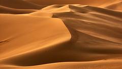 Magic of the desert (flowerikka) Tags: architektur ästhetik desert desertcolors dünen dunes emptyquarter form leere leeresviertel light linien magie nature orange rubalkhali sand silhouetten sonne stille sun uae unendlichkeit wüste wüstenlandschaft