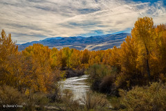 Autumn on the Truckee River (buffdawgus) Tags: nixon autumnfall landscape canonef24105mmf4lisusm lightroom6 truckeeriver nevada topazstudio paiutereservation canon5dmarkiii washoecounty
