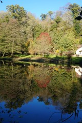 Waterloo Pond near Chilworth, Surrey 1 (Leimenide) Tags: chilworth surrey england north downs autumn trees pond lake water reflection landscape nature