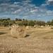 Bales of hay near Modica