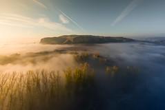 The moment... (Giacomo della Sera) Tags: ambiente atmosphere atmosfera fog niebla momento moment nature sun sol naturaleza amanecer fotografia photography