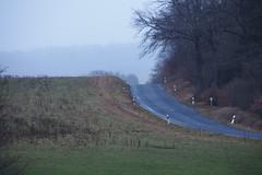 Eifel (photohml) Tags: photograf eifel vulkaneifel landstrase hetsche maar olympus zuiko omd em5 40150 m43 2019 rheinlandpfalz mistyday