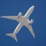 Santa Monica Pier JAL 787 JA827J heading for LAX DSC_0620 thumbnail