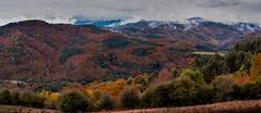 PANO OTXAGABIA 2 (juan luis olaeta) Tags: paisajes landscape panoramicas natura photoshop lightroom bosque basoa forest tree nafarroa navarra basquecountry euskalherria