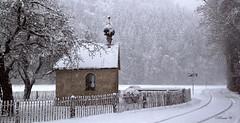 Silent time! (Renata1109) Tags: schnee gebäude baum dach kirche landschaft winter wald bayern weis deutschland snow church tree wood landscape outdoor bavaria rw reisenthal