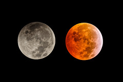 Moon Eclipse : before and during (Franck Zumella) Tags: astronomie lune eclipse astrophoto astronomy moon red rouge blood bloodmoon sky ciel deep night nuit star stars etoile dark noir sombre astro phase totaly shadow earth ombre terre totale totalité totality 2019 first premiere lunar lunaire super