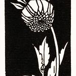 Dahlia (1920) by Julie de Graag (1877-1924). Original from The Rijksmuseum. Digitally enhanced by rawpixel. thumbnail