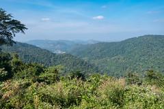 53544-Khao-Yai (xiquinhosilva) Tags: 2017 dongphayayen hintung khaoyai mueangnakhonnayokdistrict nationalpark park thailand unescoworldheritage tambonmusi changwatnakhonratchasima th