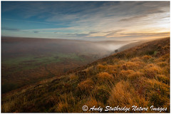 First Light,Exmoor (www.andystuthridgenatureimages.co.uk) Tags: exmoor nationalpark valley coombe moor moorland heather grass bracken dawn sunrise sky clouds daylight mist misty tree view horizon wildlife nature photography landlifephotography landscape