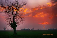 Che sensibilità il sole: arrossire tutte le sere al momento di tramontare (Gianni Armano) Tags: che sensibilità il sole arrossire tutte le sere al momento di tramontare foto gianni armano photo flickr