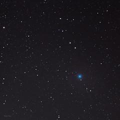 Celestial passenger (Robyn Hooz) Tags: cometa wirtanen celestial celeste stelle stars astronomy life periodic solarsystem blue tail coda round rotondo