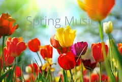 Spring - Happy Music (Serge Quadrado) Tags: piano world stock joyful ukelele letter music sun free song garden girl trust happiness unity playful rest peace track audio harmony cc ukulele musical instrument creative upbeat flower love licensed voice fun tenderness joy background april happy adrev hope uplifting flowers light heat synchronization water drums green drops freedom positive commons life smile