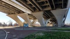 2019 Bike 180: Day 6 - Under Wilson Bridge (mcfeelion) Tags: cycling bike bicycle bike180 2019bike180 alexandriava mountvernontrail jonespointpark woodrowwilsonbridge