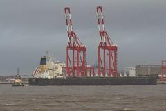 Syros I (Das Boot 160) Tags: syrosi bulker ships sea ship river rivermersey port docks docking dock boat boats maritime mersey merseyshipping
