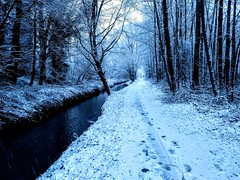 snow (Taker of pictures) Tags: snow sneeuw rivier river belgium belgië ijse