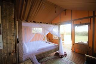 Africa Safari Lake Manyara luxury glamping tent