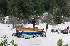 Fun in the snow (Chris Maroulakis) Tags: livadeia arvanitsa boeotia snow fun boy charriot nikond7000 2019 maroulakis chris elikonas greece