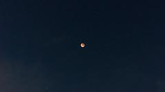 Eclipse Lunar Total (diegotapiamontaner) Tags: luna eclipse moon eclipselunar mooneclipse space santiago sky darksky stars astronomía astrofotografía astronomy astrophoto astrofoto astrophotography astrophysics astrofísica astronomiachile adobe lightroom clouds nubes chile chileansky sonya77 minolta timelapse