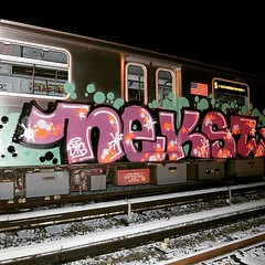 "NYG_CleanTrains_347 • <a style=""font-size:0.8em;"" href=""http://www.flickr.com/photos/79474556@N08/46944371151/"" target=""_blank"">View on Flickr</a>"