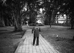 en passant par KL (Jack_from_Paris) Tags: p1000246bw panasonic dmcgx8 micro 43 pancake14mmf25asph pancake raw mode dng lightroom rangefinder télémétrique capture nx2 lr monochrom noiretblanc bw wide angle kl kuala lampur street building parc jardin balai balayeur matin