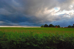 Feel It Coming (ClemB14) Tags: yattendon berkshire england storm clouds sunset sunlight fields corn ferns colors cottage