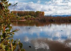 Early fall ([ Belén García ]) Tags: álava fall autumn landscape euskadi pais vasco vitoria gasteiz paisaje salburua